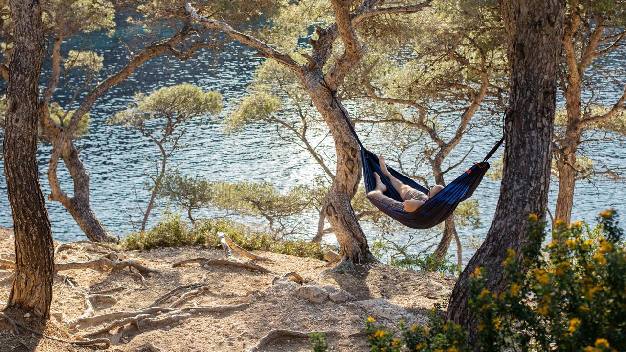 hammock life qaou