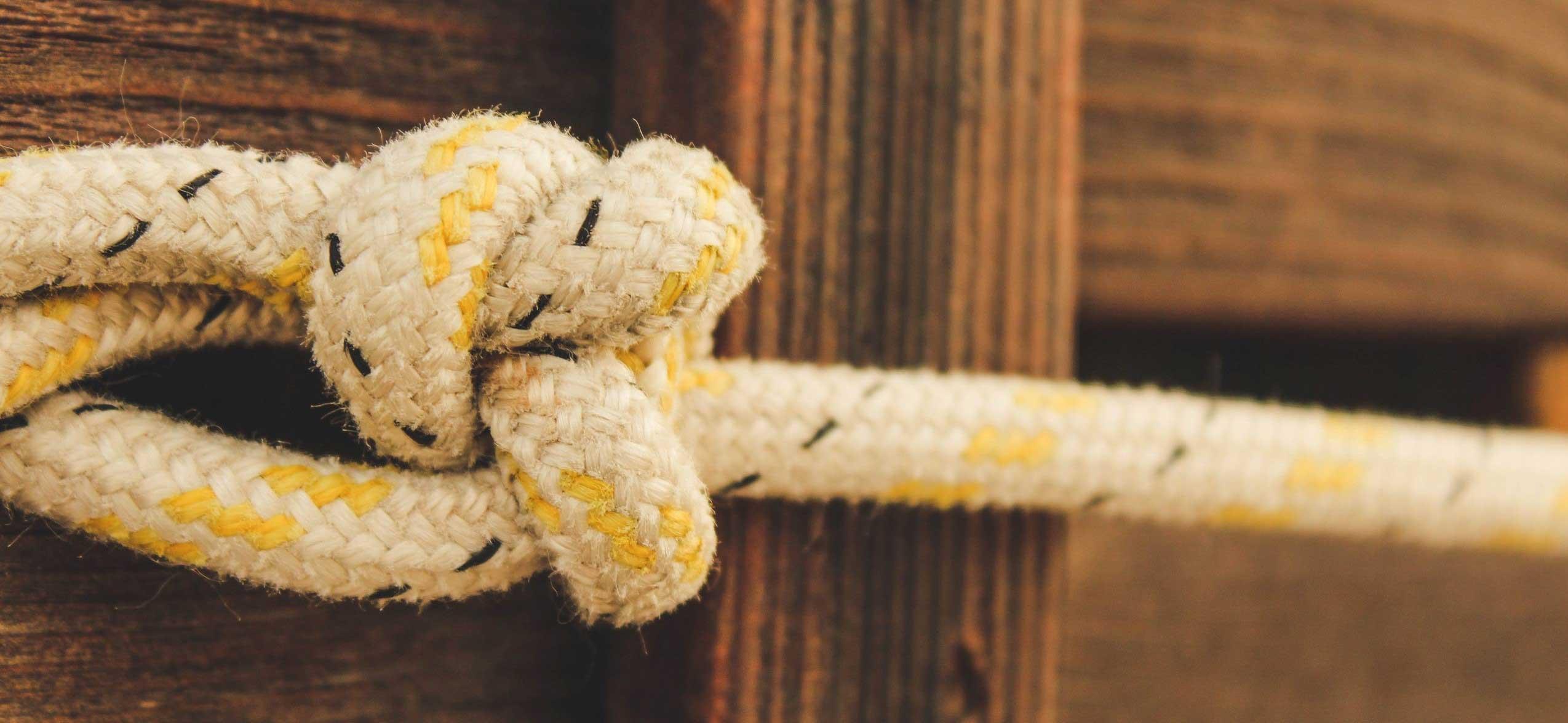 Les nœuds à connaitre dans la nature